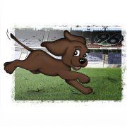 Illustration für das Kinderbuch EDDi läuft durch das Stadion