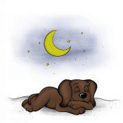 Illustration für das Kinderbuch EDDi schläft