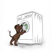 Illustration für das Kinderbuch EDDi beobachtet die Waschmaschine