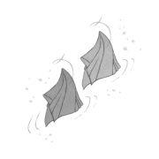 Illustration Zauberei aus dem Buch Applejucy