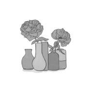 Illustration Blumenvasen aus dem Buch Applejucy