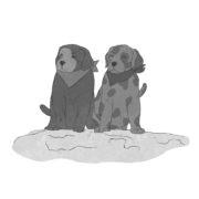 Illustration Hundewelpen aus dem Buch Applejucy